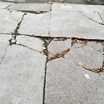 Curb or Sidewalk Issues at 1262 Vermont St