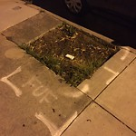 Curb or Sidewalk Issues at 1894 20th Ave