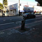 Tree Maintenance at Intersection of 16th St & Mission St
