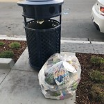 Garbage Containers at Intersection of Coleman St & Innes Ave