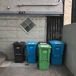 Garbage Containers at 639 Oak St