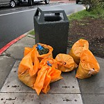 Garbage Containers at 4059 17th St