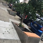 Curb or Sidewalk Issues at 1051 BROADWAY