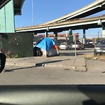 Encampment at Intersection of 9th St & Division St
