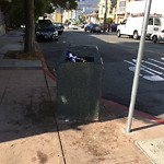 Garbage Containers at Intersection of Leland Ave & Peabody St