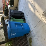 Garbage Containers at 2030 Lyon St Pacific Heights