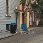 Street or Sidewalk Cleaning at 415 IVY ST