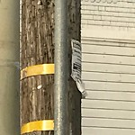 Illegal Postings at Intersection of 23rd St & Castro St