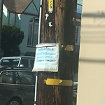 Illegal Postings at Intersection of 43rd Ave & Lawton St