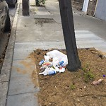 Street or Sidewalk Cleaning at 2699 18 Th St