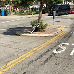 Parking & Traffic Sign Repair at 1605 Alabama St