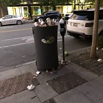 Garbage Containers at 1322 4th St