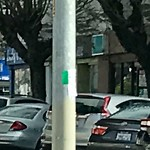 Illegal Postings at Intersection Of 7th Ave & Cornwall St