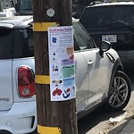 Illegal Postings at Intersection Of Appleton Ave & Holly Park Cir