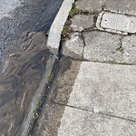 Flooding, Sewer & Water Leak Issues at 2568 24th Ave
