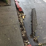 Curb & Sidewalk Issues at 5241 Geary Blvd