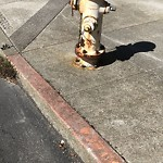 Curb & Sidewalk Issues at Broderick St & Broadway Pacific Heights Sf