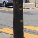 Illegal Postings at Intersection Of Excelsior Ave & Paris St