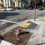 Street or Sidewalk Cleaning at 1000 Mendell St
